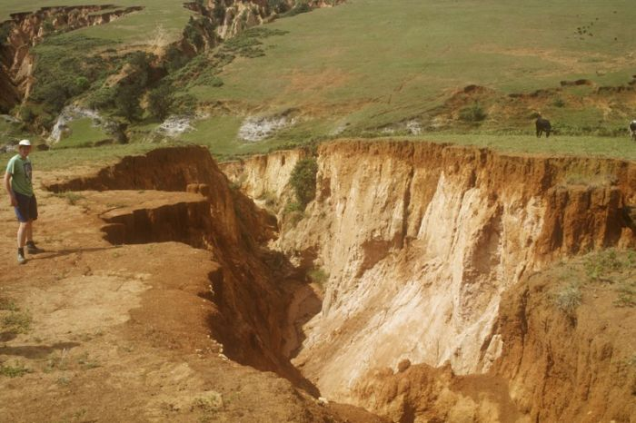 questions on gully erosion • finally, gully erosion is the stage in which soil particles are transported through large channels gullies carry water for brief periods of time during rainfall or snowmelt, but appear as small valley s or crevasse s during dry season s.